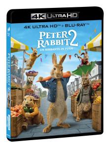 Peter Rabbit 2_4K