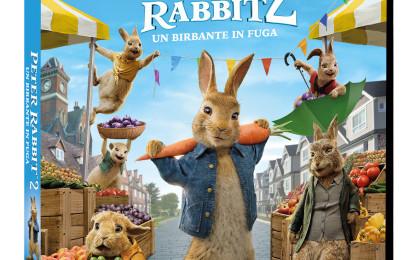 Cinema d'autore della Eagles Pictures a settembre: Peter Rabbit 2 un birbante in fuga